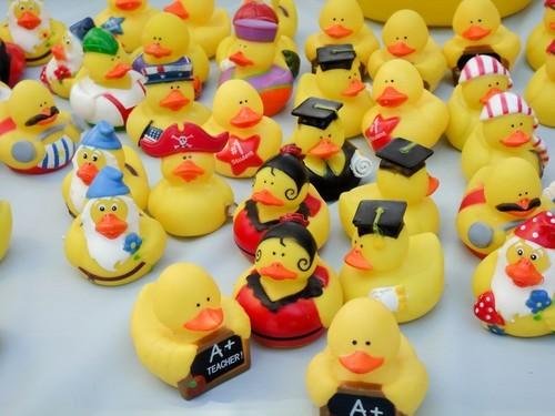 sv_duck_race_2011