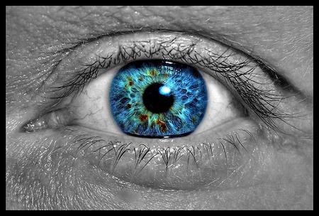 Eye_eye