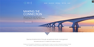 bie-homepage-screenshot.png
