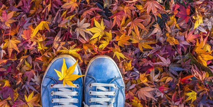 How to maximise the potential of seasonal marketing for B2B