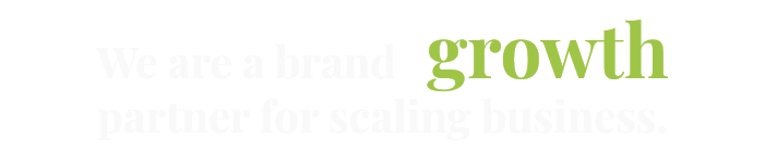 We are a brand growth partner for scaling business.